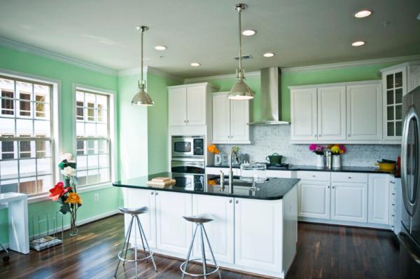 InteriorDesign_5_WashingtonDC_ Kitchen with Island